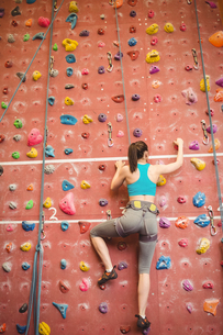 Woman climbing up rock wallの写真素材 [FYI00486169]