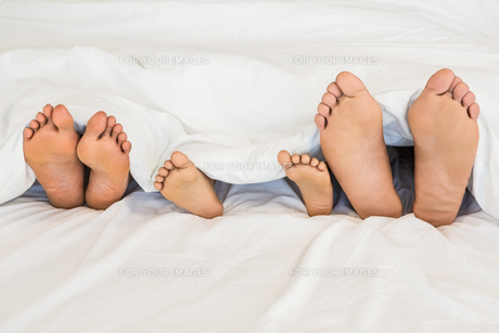 Familys feet out of a bedの素材 [FYI00486301]
