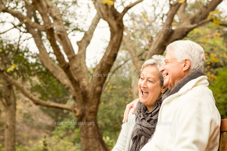 Senior couple in the parkの写真素材 [FYI00486349]