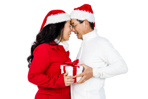 Festive senior couple exchanging giftsの写真素材 [FYI00486511]