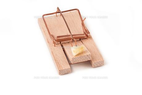 Mousetrap with cheese on itの写真素材 [FYI00486626]