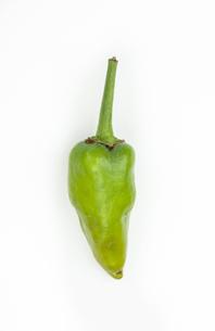 Green chili pepperの写真素材 [FYI00486645]