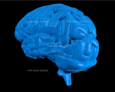 Blue brainの素材 [FYI00486848]