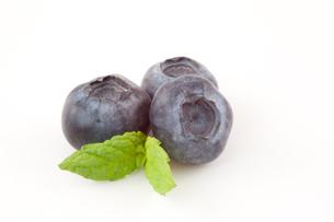 Three blueberriesの素材 [FYI00486902]