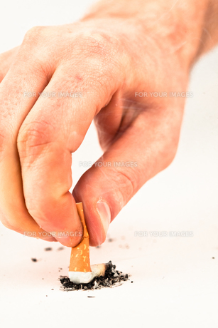 Hand extinguished a cigaretteの写真素材 [FYI00486918]