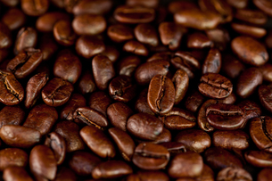 Dark coffee seeds laid out togetherの写真素材 [FYI00486986]
