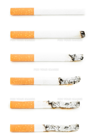 Different cigarettes burningの素材 [FYI00486989]