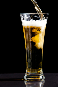 Glass being filled with beerの写真素材 [FYI00487021]