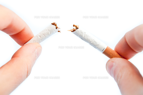 Fingers breaking a cigaretteの素材 [FYI00487031]