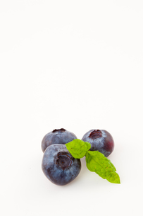 Blueberriesの素材 [FYI00487100]