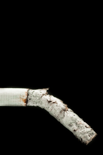 Cinder of cigaretteの写真素材 [FYI00487115]