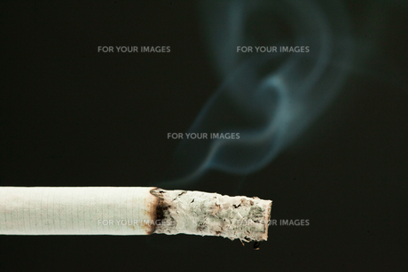 Cigarette lightedの素材 [FYI00487123]