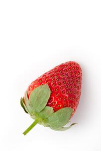 Strawberryの写真素材 [FYI00487148]