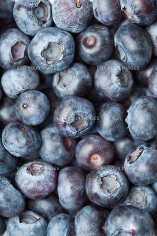Heap of blueberriesの写真素材 [FYI00487179]