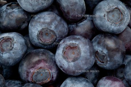 Heap of blueberryの素材 [FYI00487183]
