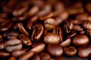 Blurred coffee seeds laid out togetherの写真素材 [FYI00487225]