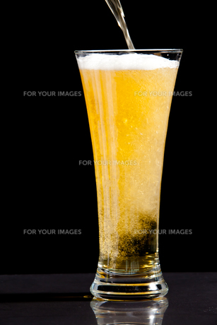 Glass finishing to be filled with beerの写真素材 [FYI00487244]