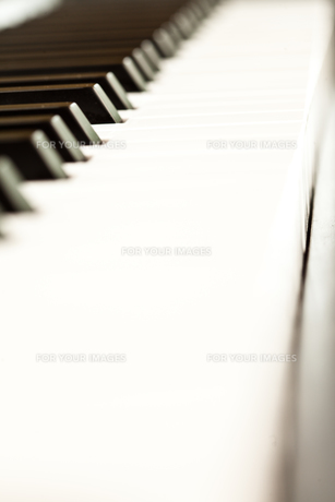 Close up of keys of a pianoの素材 [FYI00487287]