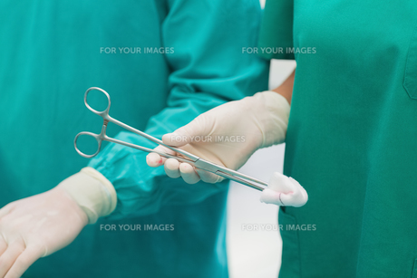 Close up of a surgical scissors with a compressの素材 [FYI00487291]