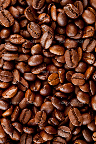 Close up of coffee seedsの写真素材 [FYI00487397]