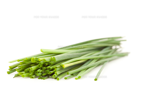 Close up of chive branchesの写真素材 [FYI00487429]