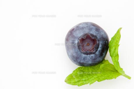 Blueberryの写真素材 [FYI00487445]