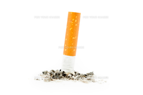 Cigarette extinguishedの素材 [FYI00487457]
