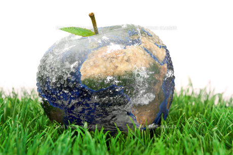 3d apple Earth on the grassの写真素材 [FYI00487478]