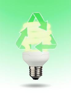 Ecological light bulbの写真素材 [FYI00487518]