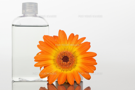 Close up of a glass flask and an orange gerbera on a mirrorの写真素材 [FYI00487623]