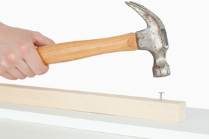 Hammer driving a nail into a wooden boardの素材 [FYI00487624]