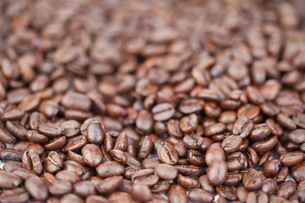 Coffee beansの写真素材 [FYI00487645]