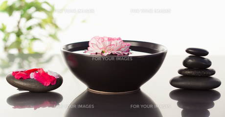 Pink carnation floating in a bowl with petals on a black stone on one side and a stack ok black stonの素材 [FYI00487685]