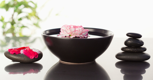 Pink carnation floating in a bowl with petals on a black stone on one side and a stack ok black stonの写真素材 [FYI00487685]