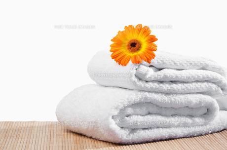 White towels under a sunflowerの素材 [FYI00487697]