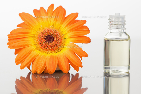 A glass phial and an orange gerberaの写真素材 [FYI00487712]