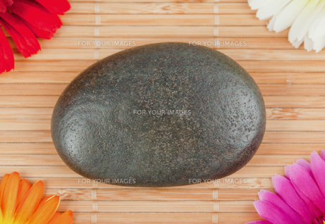Round smooth pebble surrounded by colourfull gerberasの素材 [FYI00487752]