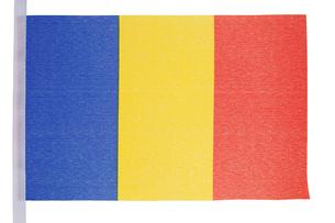 Romanian flagの素材 [FYI00487792]