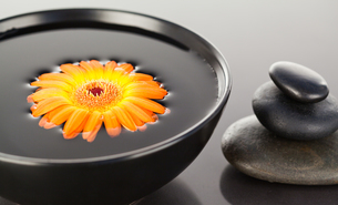 Orange flower floating on a black bowl and a stack of black pebblesの写真素材 [FYI00487804]