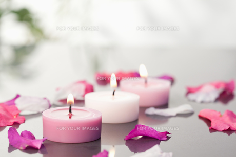 Lighted candles and petalsの写真素材 [FYI00487815]