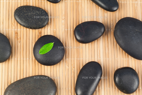 Black stones with a leaf on one of themの素材 [FYI00487851]
