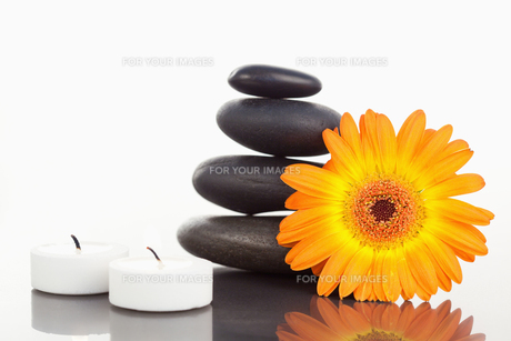 Unlighted candles pebble stack an orange gerberaの素材 [FYI00487883]