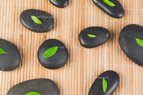 Leaves on black stonesの写真素材 [FYI00487968]