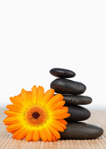An orange sunflower and a black stones stackの写真素材 [FYI00487987]