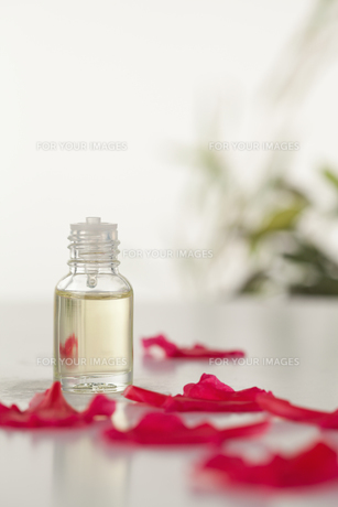 Glass phial and pink petalsの写真素材 [FYI00488011]