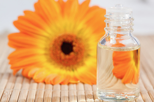 Close up on a glass phial and a sunflowerの素材 [FYI00488022]