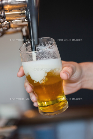Hand holding glass filling beerの写真素材 [FYI00488123]