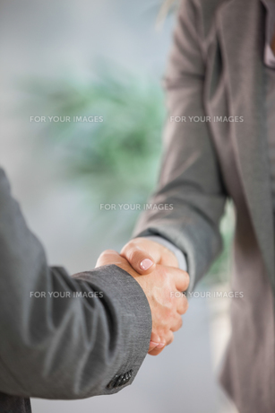 Business team shaking hands close upの写真素材 [FYI00488154]