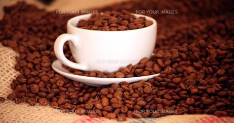 Morning coffee with Beansの写真素材 [FYI00488193]