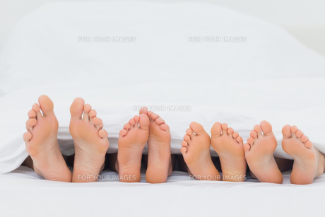 Family on the bed showing their feetの写真素材 [FYI00488198]